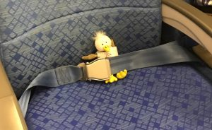 Small plush toy bird buckled into an airplane seat