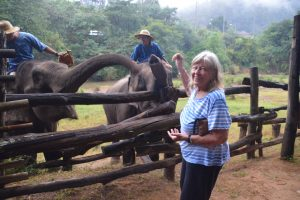 Kathy Swanson standing near a fence, feeding two young elephants on the opposite side