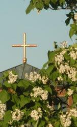 cross-white-tree2