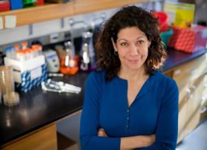 Bonnie L. Bassler, PhD