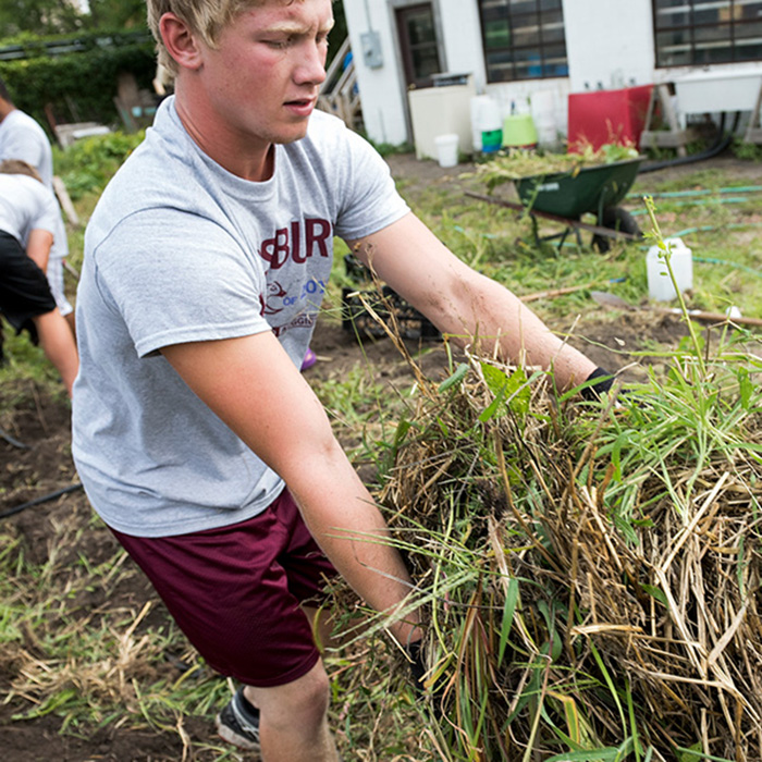 City Service Day Student Working