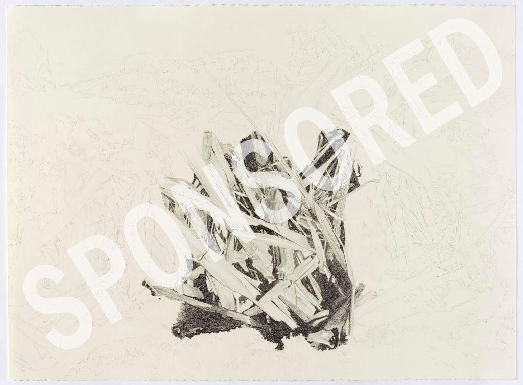 """Winter Corn"" by Norman Holen - Sponsored"
