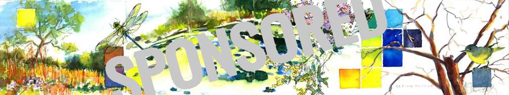 "Tara Sweeney - ""Seeing Nature"" with the words ""Sponsored"" overlaid"