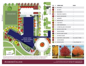 Hagfors center and Urban Arboretum plan