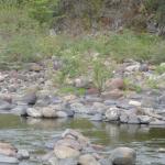 Nature Photo Nicaragua