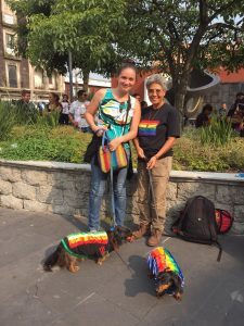 two people wear rainbow gear holding leashes with small dogs