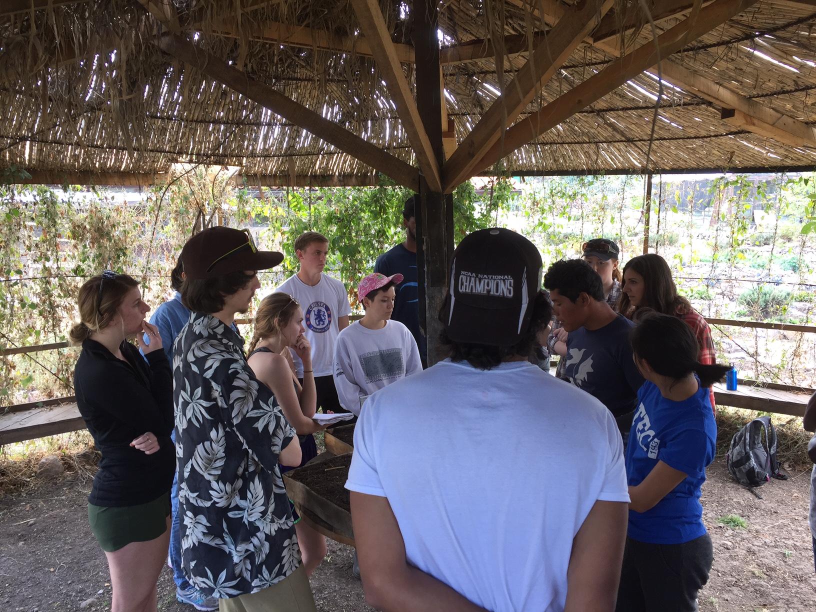 Group at organic farm