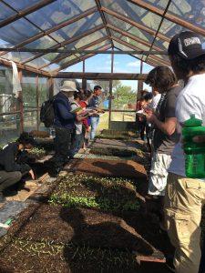 Students examine soil