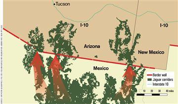 Existing border wall and jaguar movement corridors.