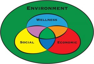 bemidji state sustainability model