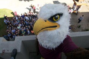 Eagle at Homecoming