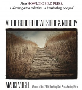 At the Border of Wilshire & Nobody, by Marci Vogel; Winner of the 2015 Howling Bird Press Poetry Prize.