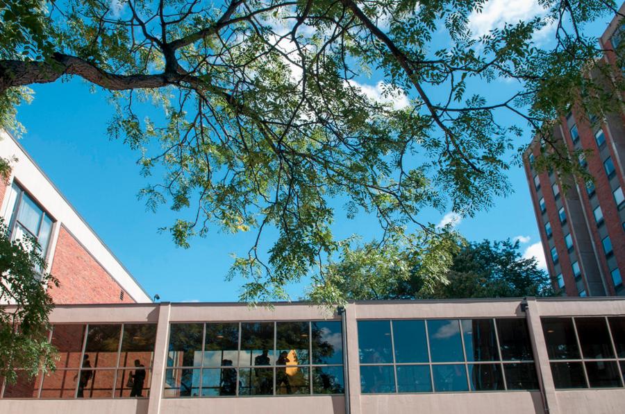 Augsburg receives Carnegie Foundation's Community Engagement Classification
