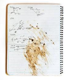 The field journal of Anika Clark