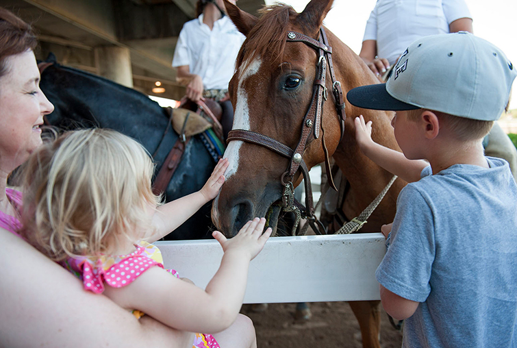 People pet horse at Auggie Night at the Races - Canterbury Park
