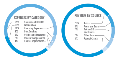 Expenses by category and revenue by source information