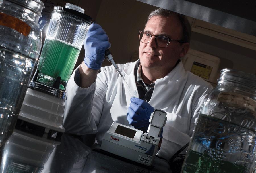 Associate Professor of Biology Matthew Beckman in science lab
