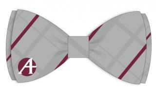 Mock-up of tie design