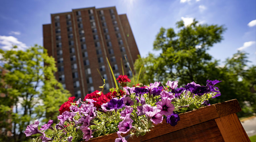 Flowers in a planter in front of Mortensen Tower