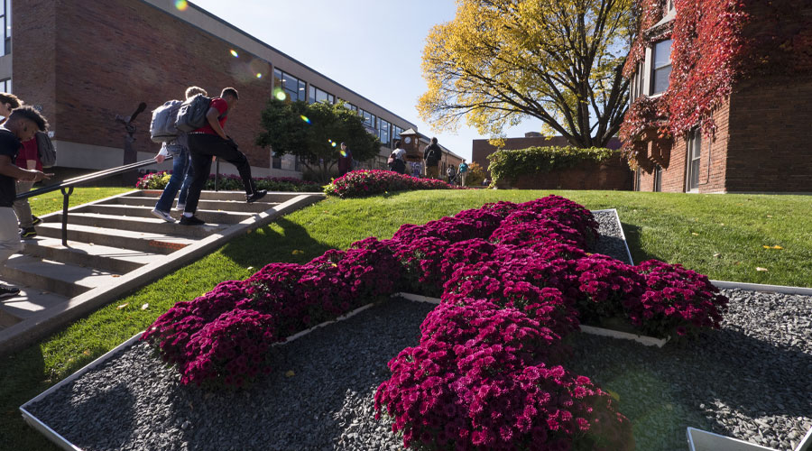 Flowers in the shape of the Augsburg A. On campus leading up to the quad.