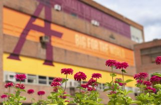 You chimed in: Alumni are thankful for Augsburg resources