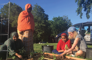 Generosity Blossoms in Augsburg's Community Garden