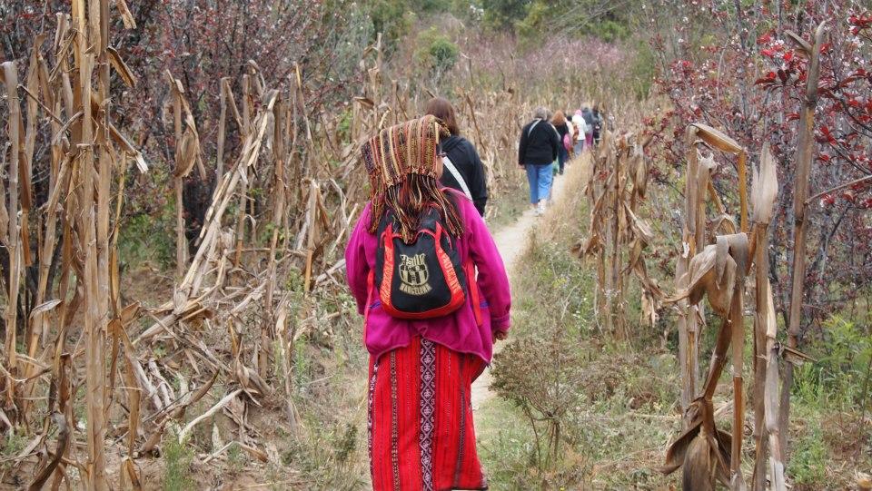 Mayan women hiking in woods