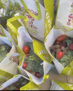 Grocery bags filled with fresh produce, ready to be delivered to community partners.