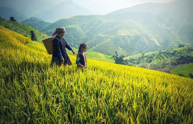 Hmong woman and child walking down hill in a mountainous agricultural environment