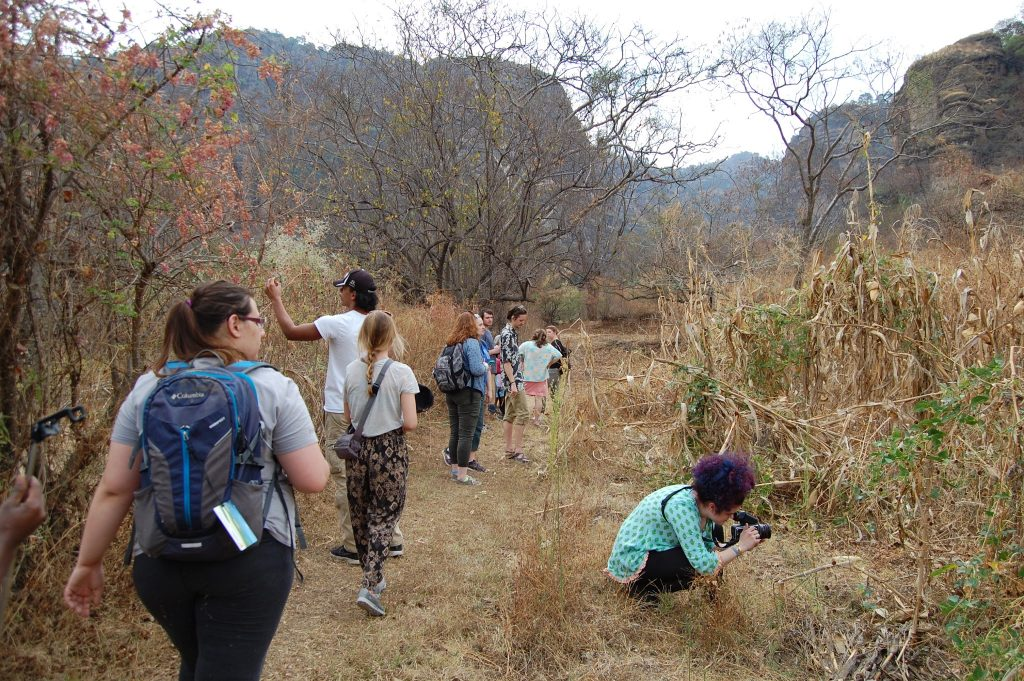 Students exploring nature in Mexico