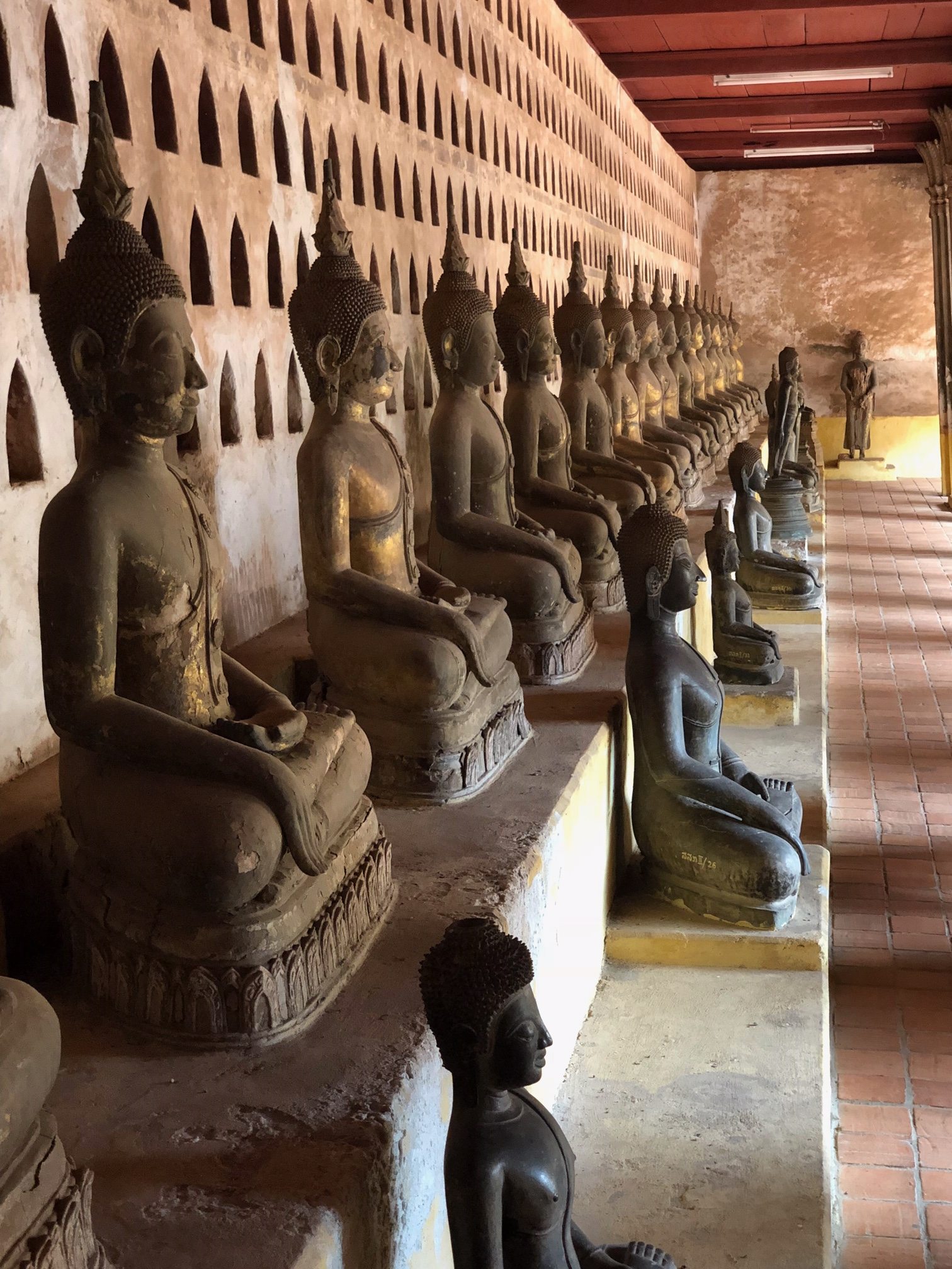 Photo of long row of bronze buddha statues