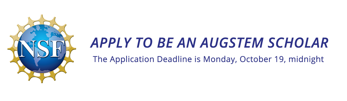 apply to be an augstem scholar, the deadline is Monday October 19, midnight