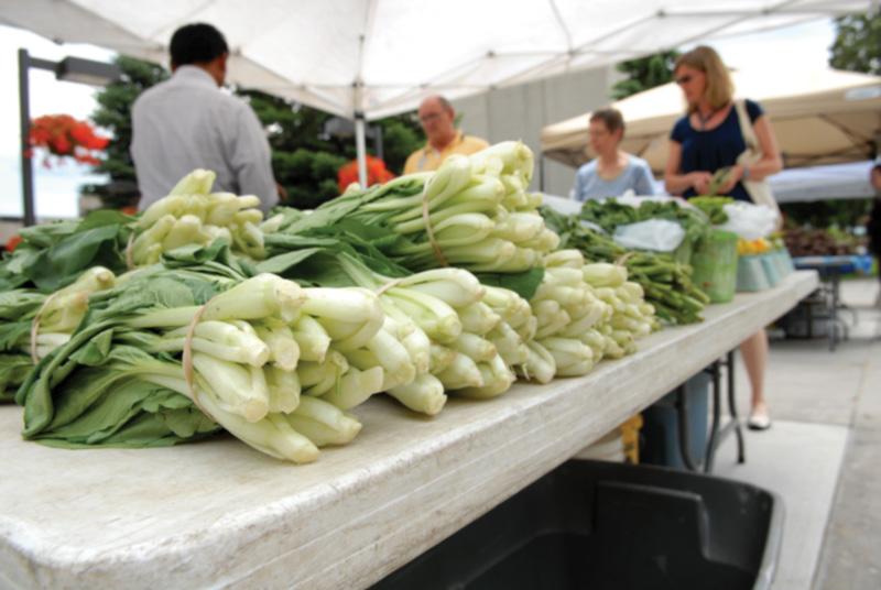Augsburg farmers market