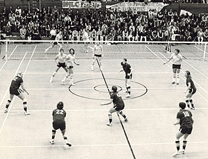 picture of volleyball match